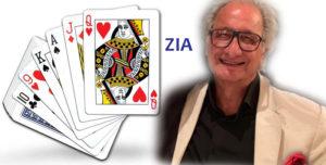 Zia - Vinita Gupta Blog